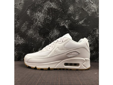 Nike WMNS Air Max 90 White Gum 325213-135 Women